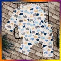 Quần áo trẻ em TÍT MÍT BABYXO bộ dài size XL
